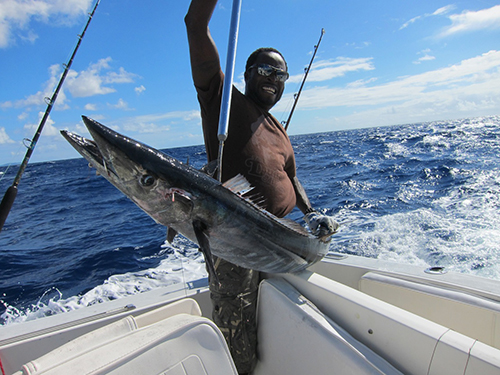 Deep sea fishing and charters in antigua best fishing for Best time to go deep sea fishing in the gulf